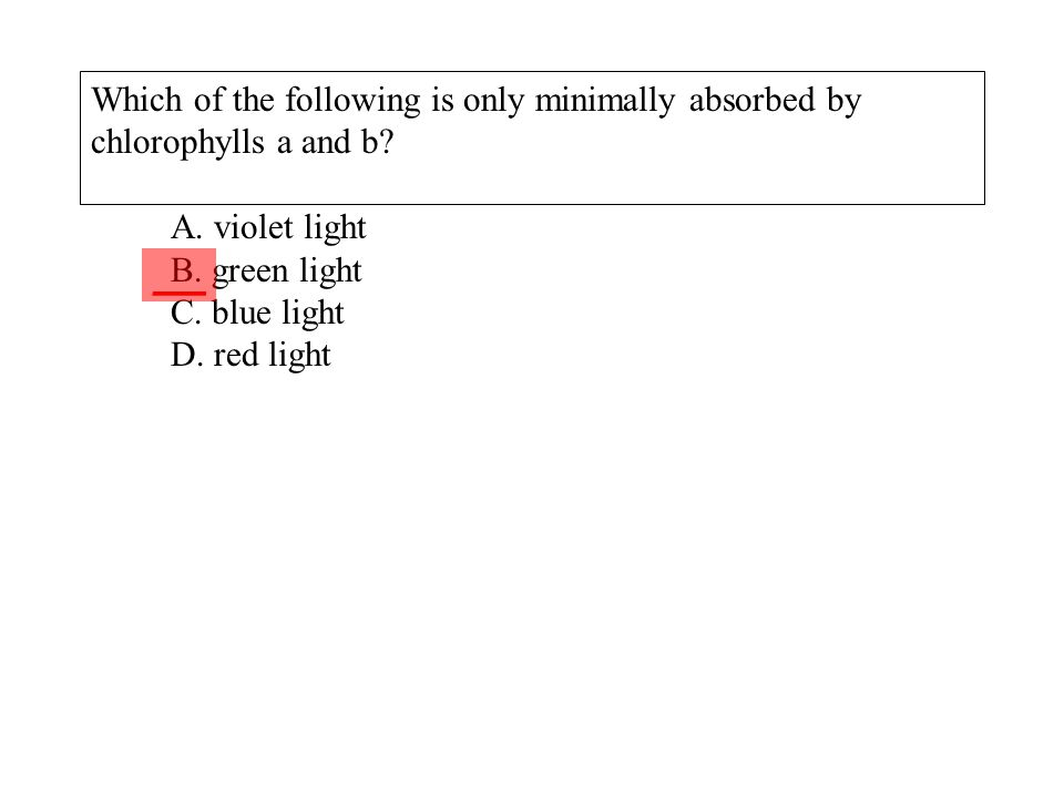 Which of the following is only minimally absorbed by chlorophylls a and b A. violet light B. green light C. blue light D. red light