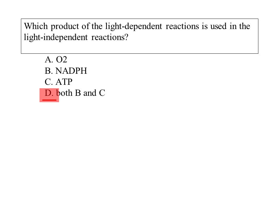 Which product of the light-dependent reactions is used in the light-independent reactions A. O2 B. NADPH C. ATP D. both B and C