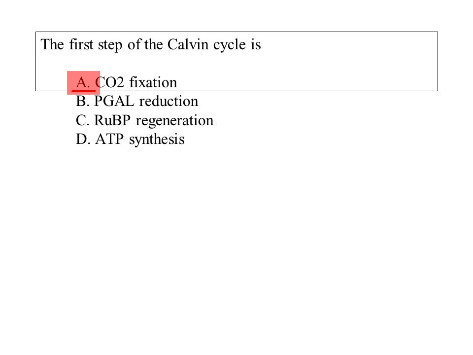 The first step of the Calvin cycle is A. CO2 fixation B