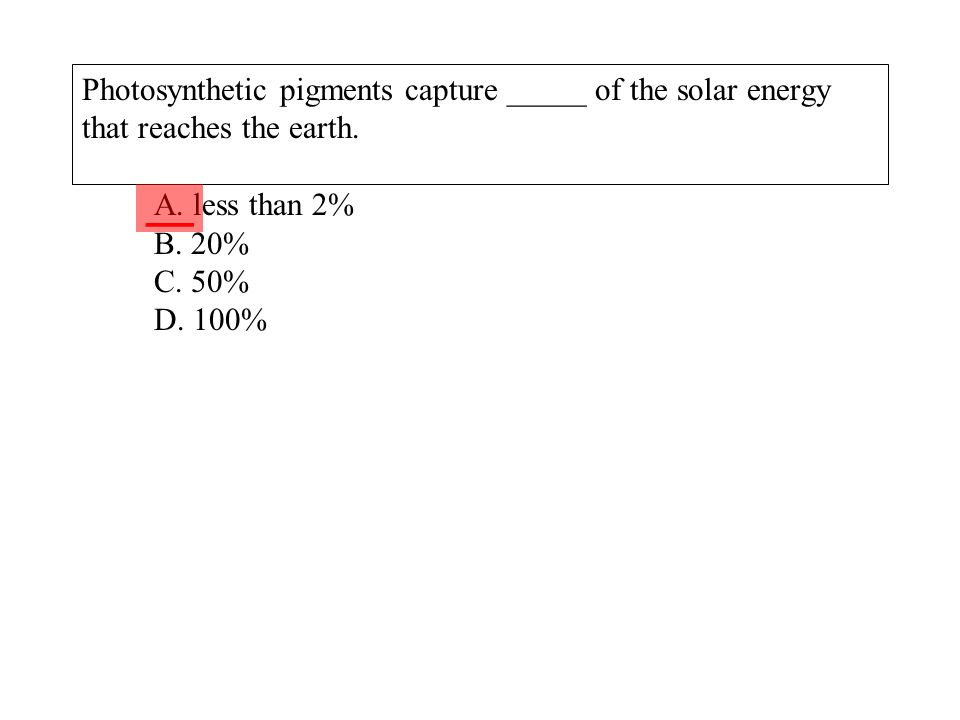 Photosynthetic pigments capture _____ of the solar energy that reaches the earth. A. less than 2% B. 20% C. 50% D. 100%