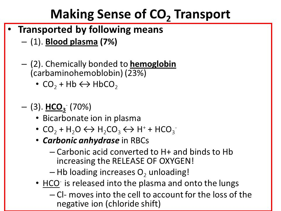 Making Sense of CO2 Transport