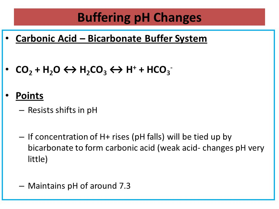 Buffering pH Changes Carbonic Acid – Bicarbonate Buffer System