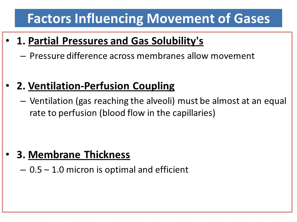 Factors Influencing Movement of Gases