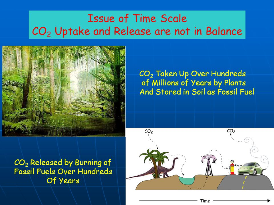 CO2 Uptake and Release are not in Balance