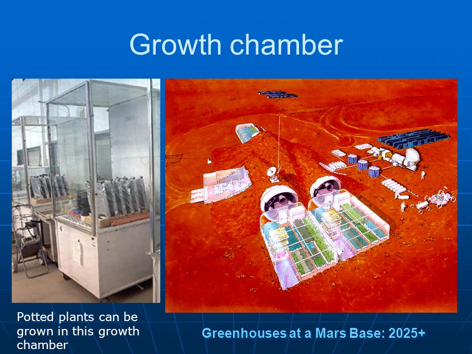 Growth chamber Greenhouses at a Mars Base: 2025+