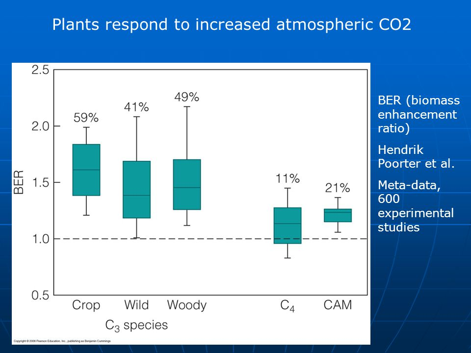 Plants respond to increased atmospheric CO2