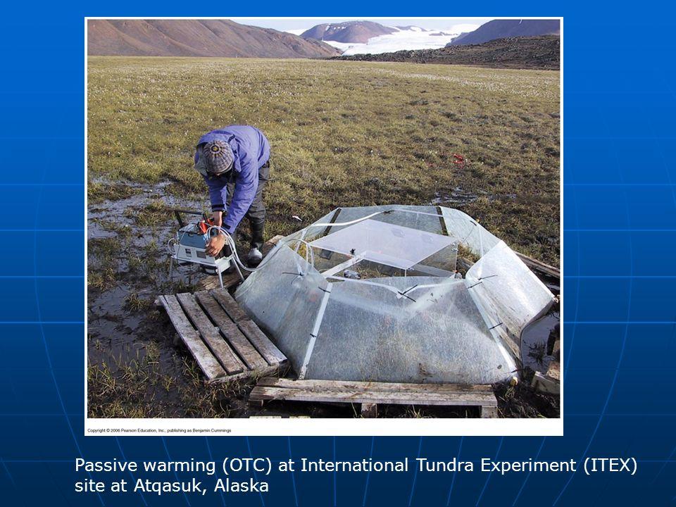 Figure 29.19 Passive warming (OTC) at International Tundra Experiment (ITEX) site at Atqasuk, Alaska.
