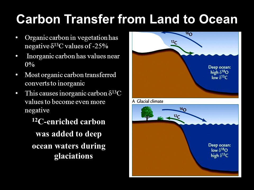 Carbon Transfer from Land to Ocean