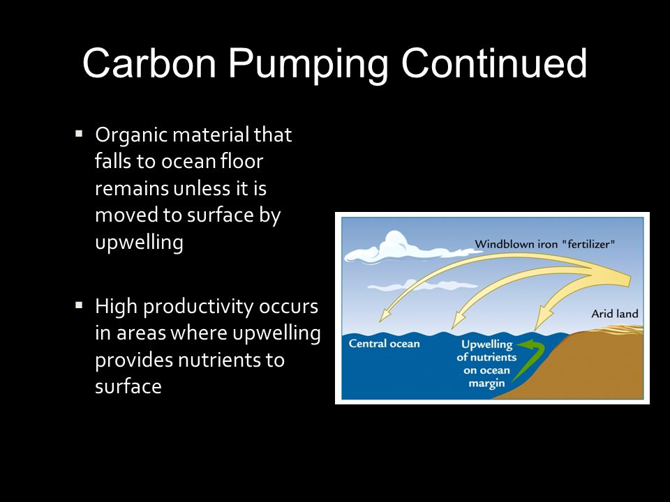 Carbon Pumping Continued