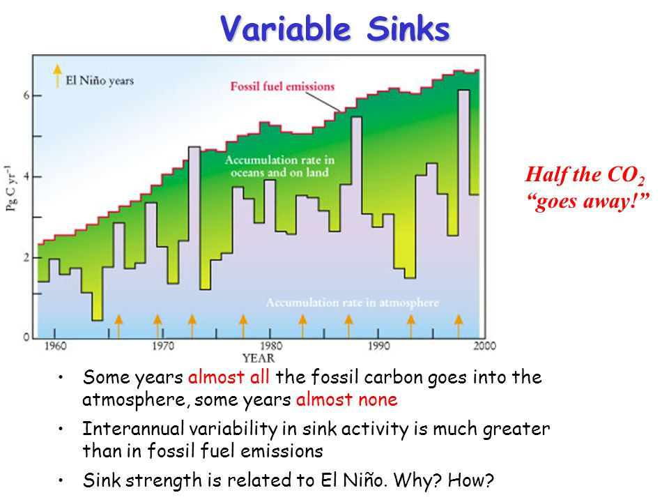 Variable Sinks Half the CO2 goes away!