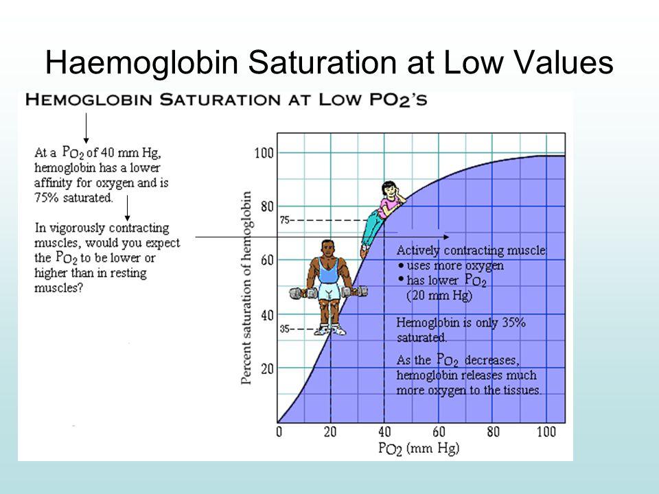 Haemoglobin Saturation at Low Values