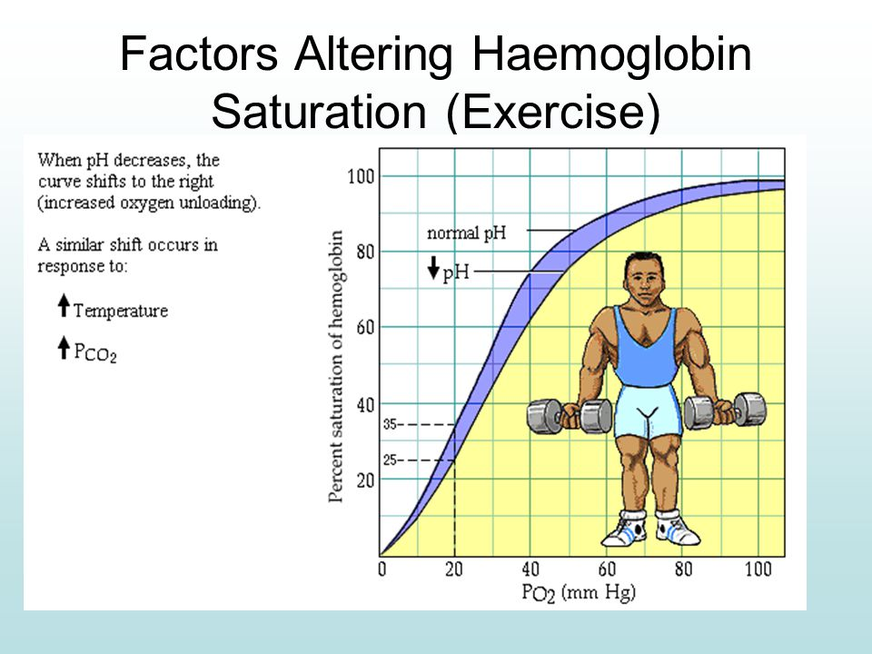 Factors Altering Haemoglobin Saturation (Exercise)