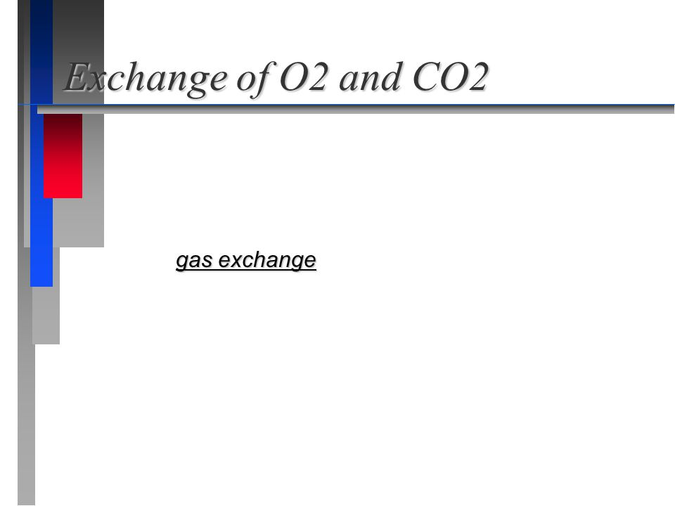 Exchange of O2 and CO2 gas exchange