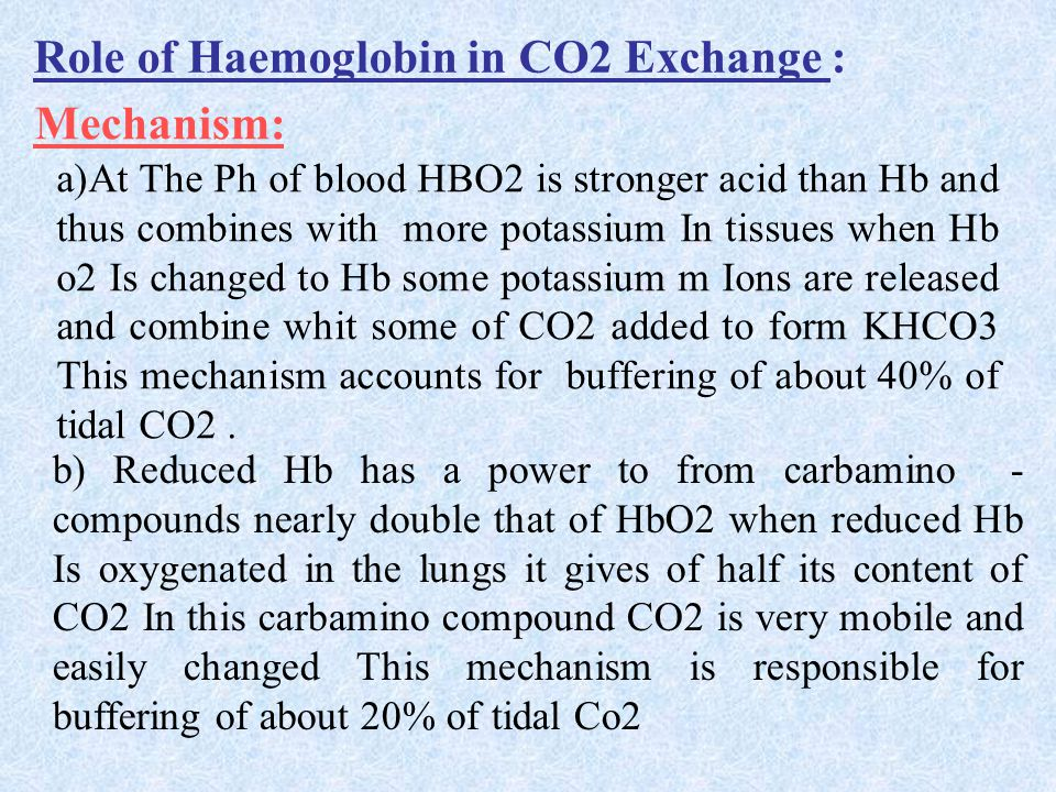 Role of Haemoglobin in CO2 Exchange : Mechanism: