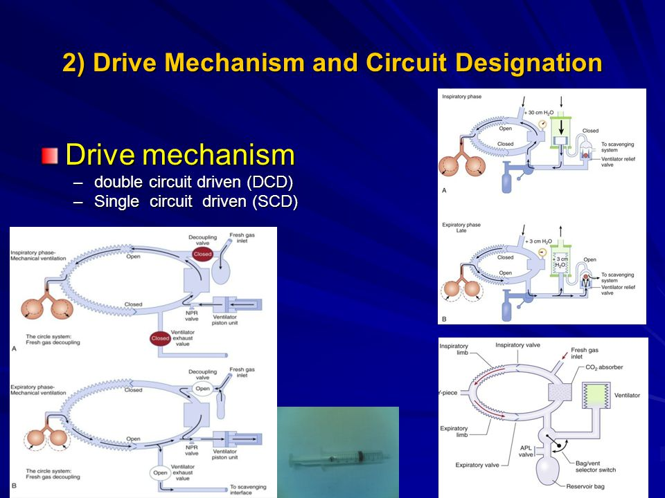 2) Drive Mechanism and Circuit Designation