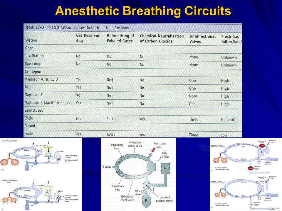 Anesthetic Breathing Circuits