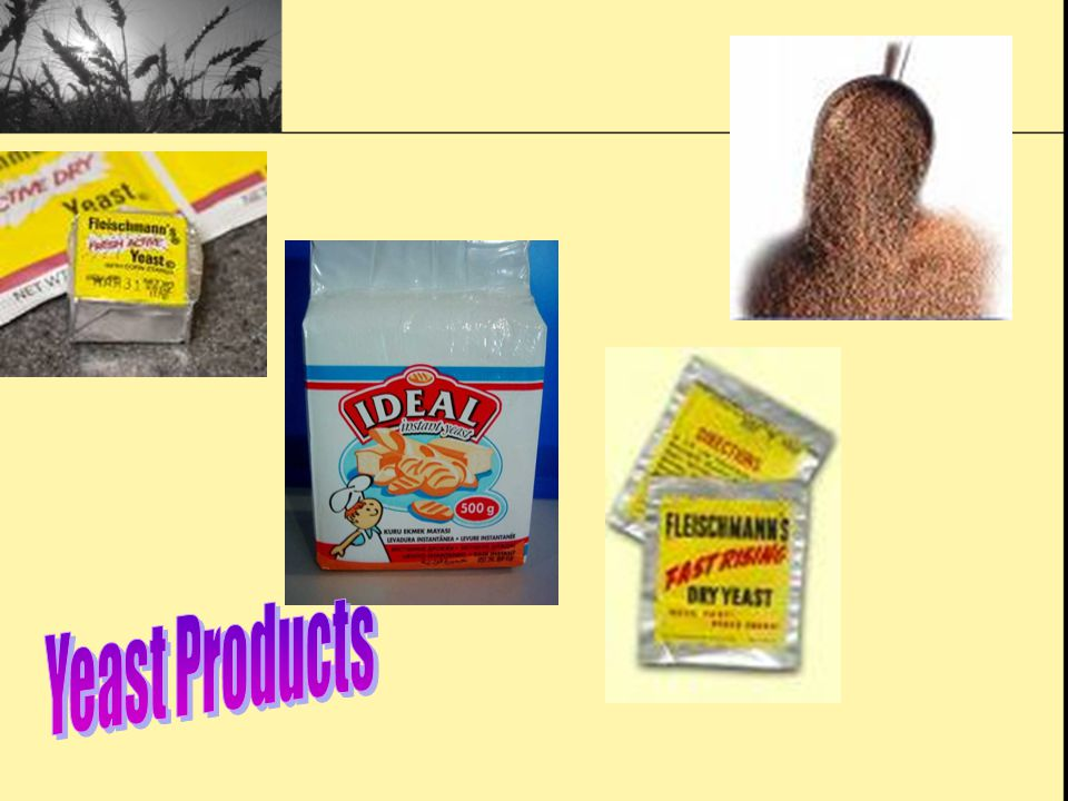 Yeast Products