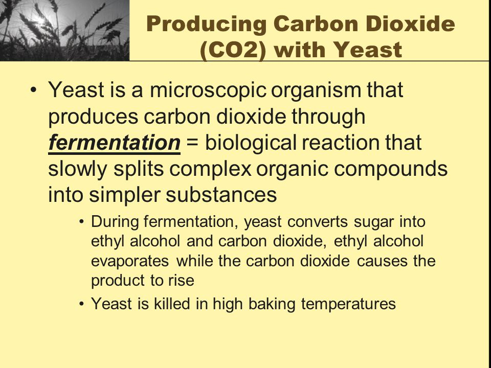 Producing Carbon Dioxide (CO2) with Yeast