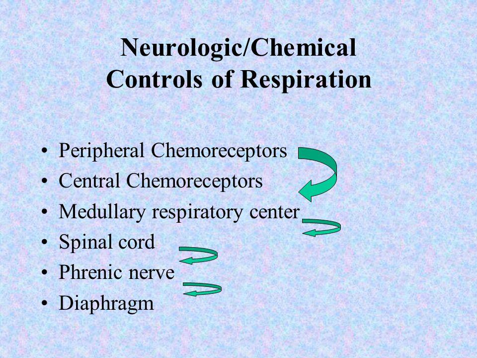 Neurologic/Chemical Controls of Respiration