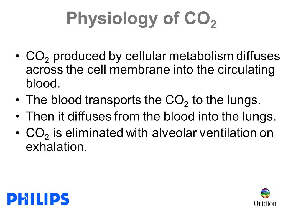 Physiology of CO2 CO2 produced by cellular metabolism diffuses across the cell membrane into the circulating blood.