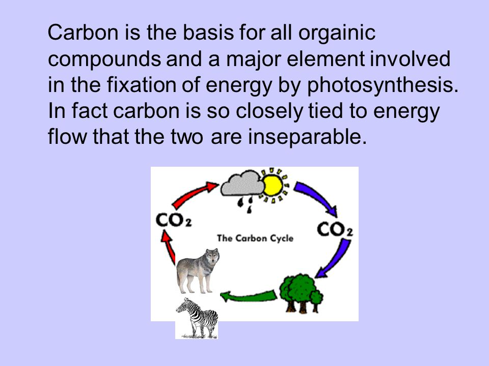 Carbon is the basis for all orgainic compounds and a major element involved in the fixation of energy by photosynthesis.