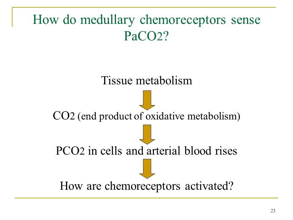 How do medullary chemoreceptors sense PaCO2