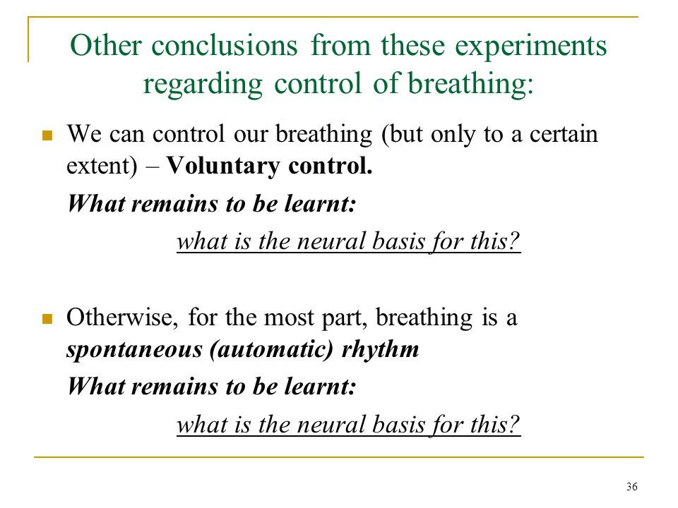 Other conclusions from these experiments regarding control of breathing: