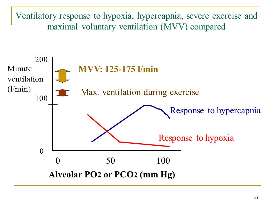 Max. ventilation during exercise