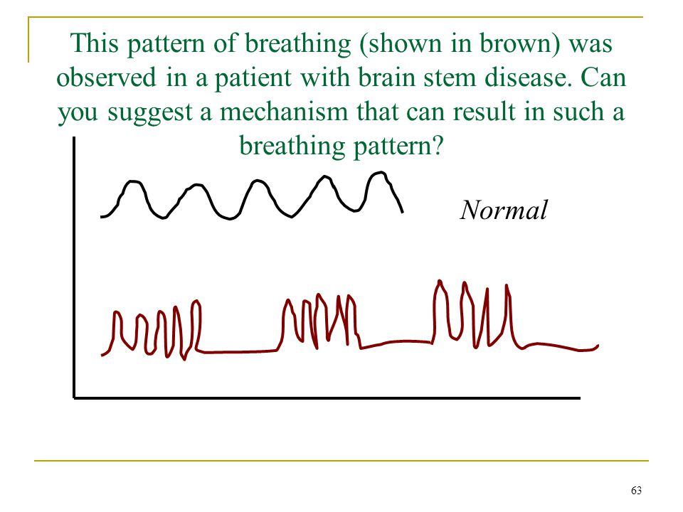 This pattern of breathing (shown in brown) was observed in a patient with brain stem disease. Can you suggest a mechanism that can result in such a breathing pattern