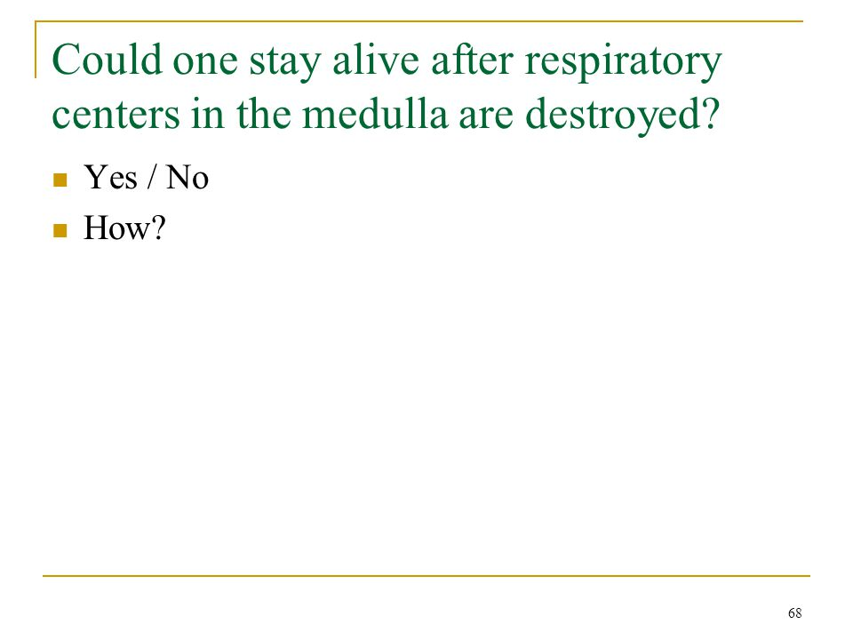 Could one stay alive after respiratory centers in the medulla are destroyed