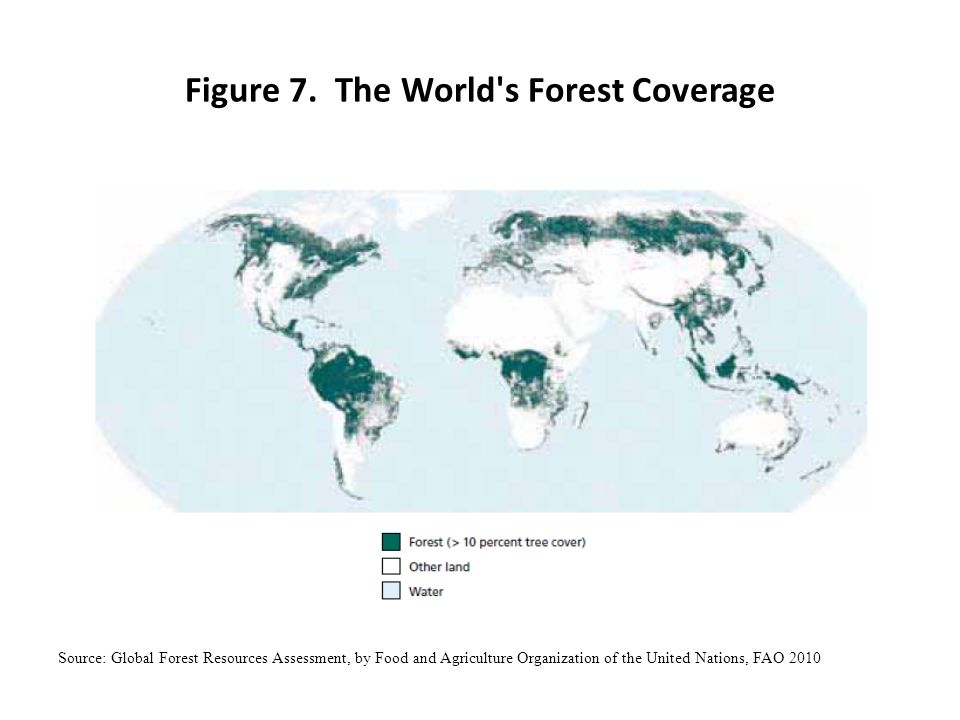 Figure 7. The World s Forest Coverage