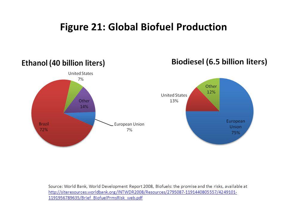 Figure 21: Global Biofuel Production