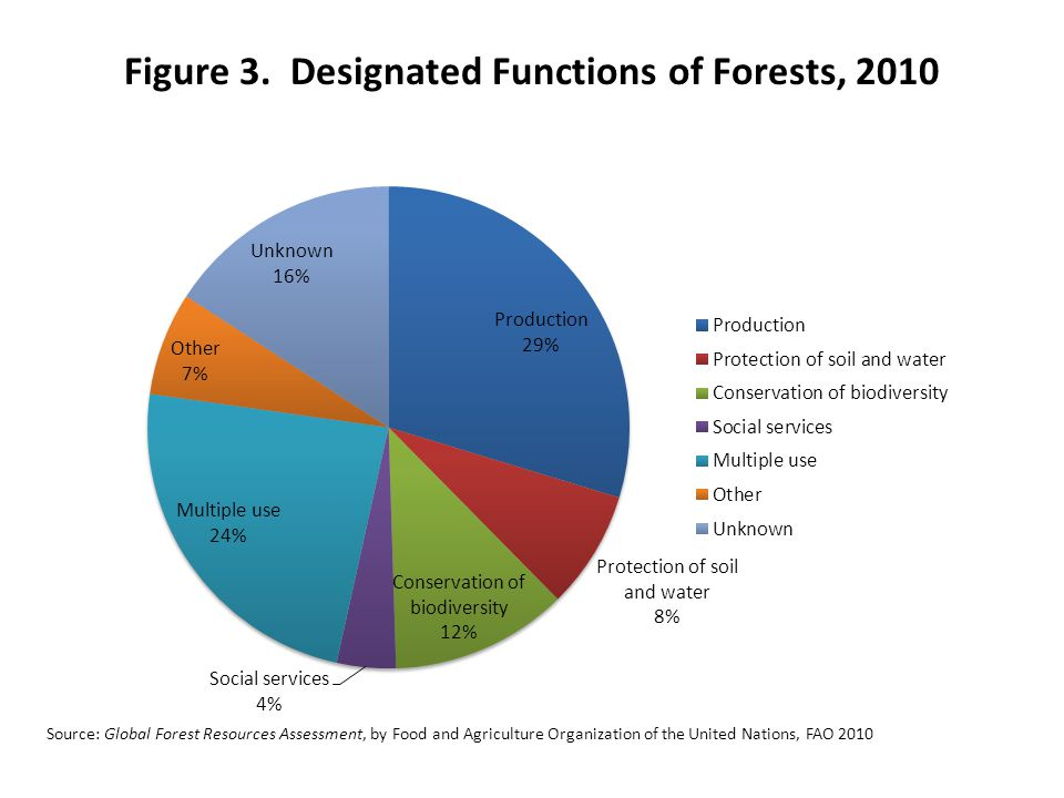 Figure 3. Designated Functions of Forests, 2010