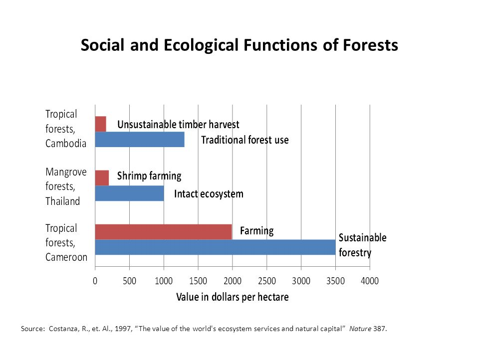 Social and Ecological Functions of Forests