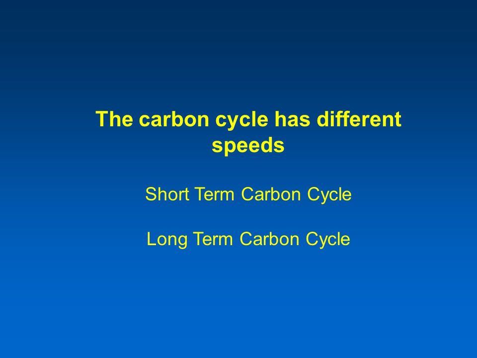 The carbon cycle has different speeds