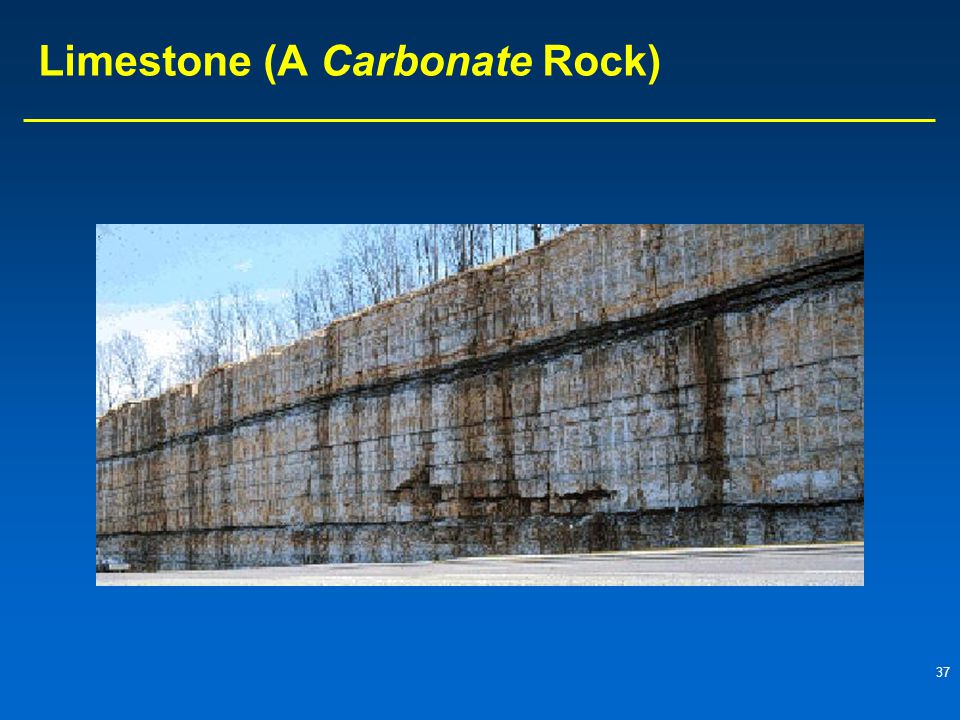 Limestone (A Carbonate Rock)