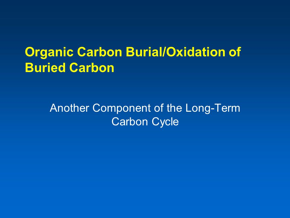 Organic Carbon Burial/Oxidation of Buried Carbon