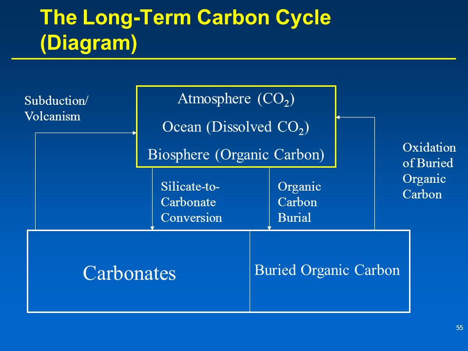 The Long-Term Carbon Cycle (Diagram)