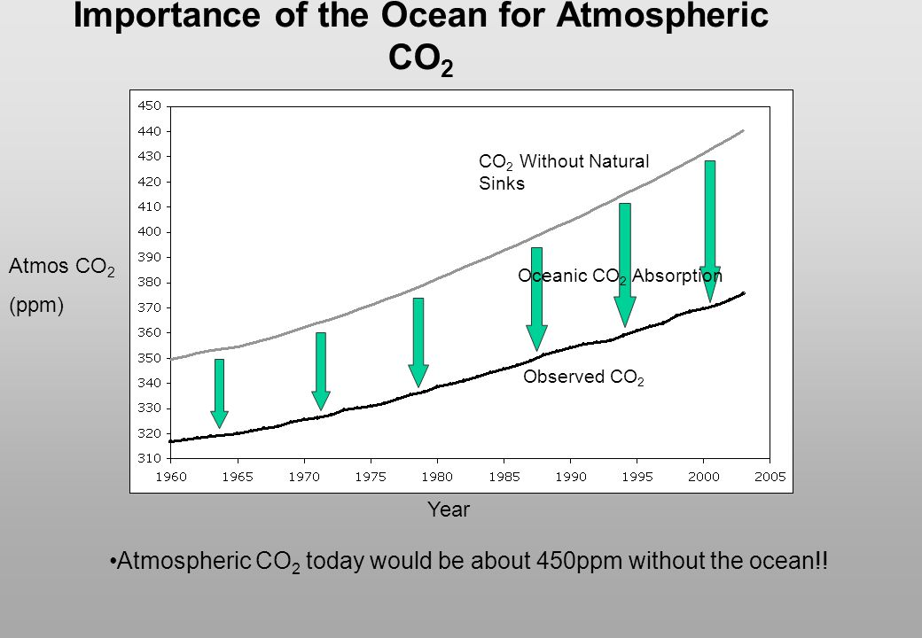 Importance of the Ocean for Atmospheric CO2
