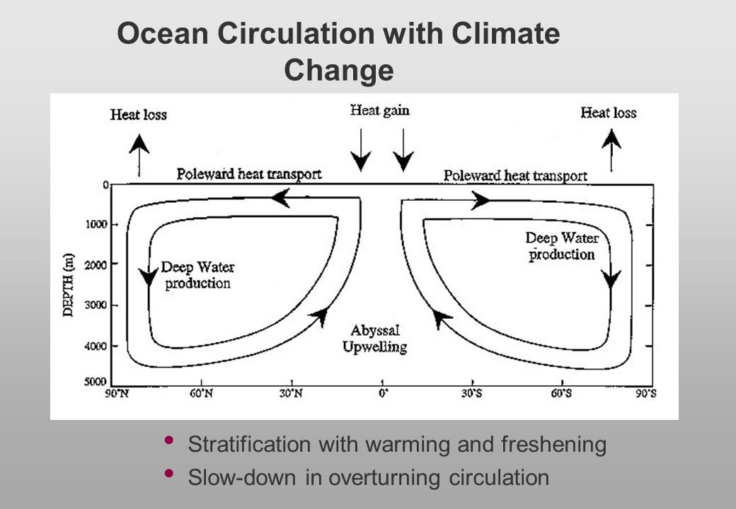Ocean Circulation with Climate Change
