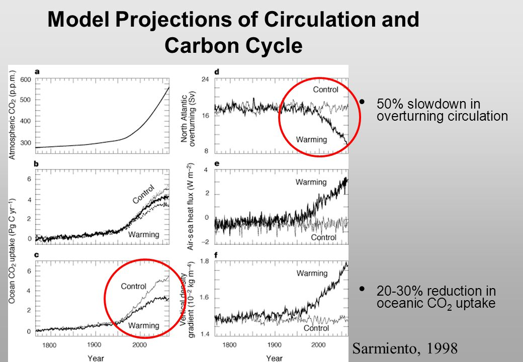 Model Projections of Circulation and Carbon Cycle
