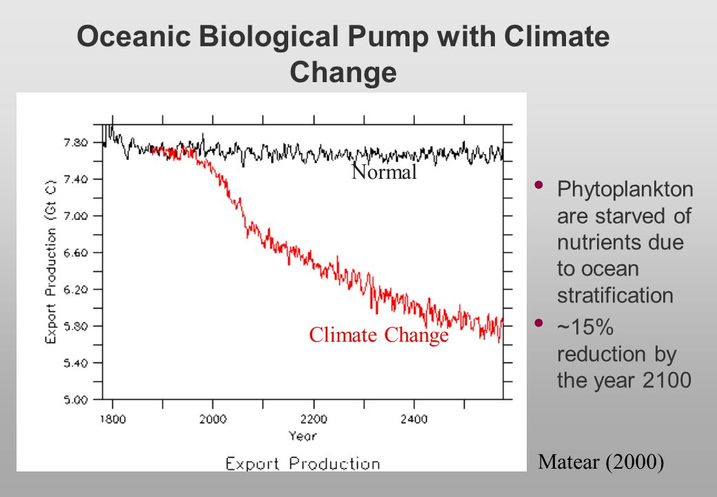 Oceanic Biological Pump with Climate Change
