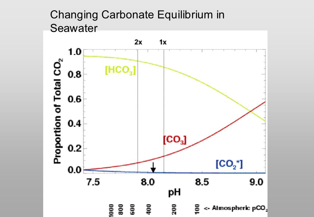 Changing Carbonate Equilibrium in Seawater