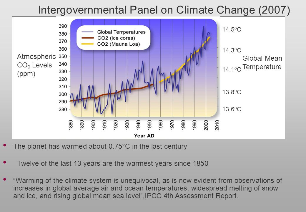 Intergovernmental Panel on Climate Change (2007)
