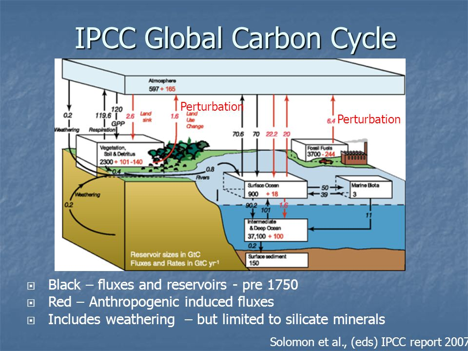 IPCC Global Carbon Cycle