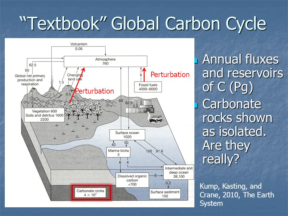 Textbook Global Carbon Cycle