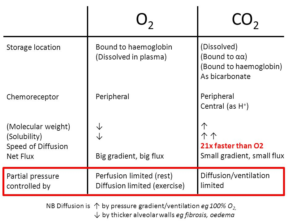 O2 CO2 Storage location Bound to haemoglobin (Dissolved)