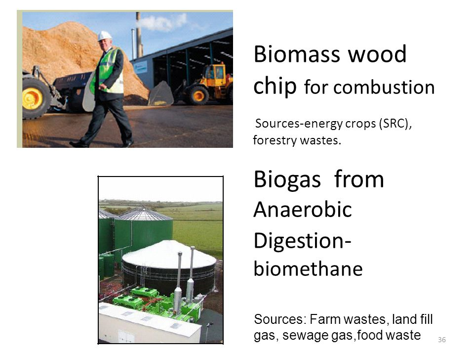 Biomass wood chip for combustion Sources-energy crops (SRC), forestry wastes. Biogas from Anaerobic Digestion- biomethane