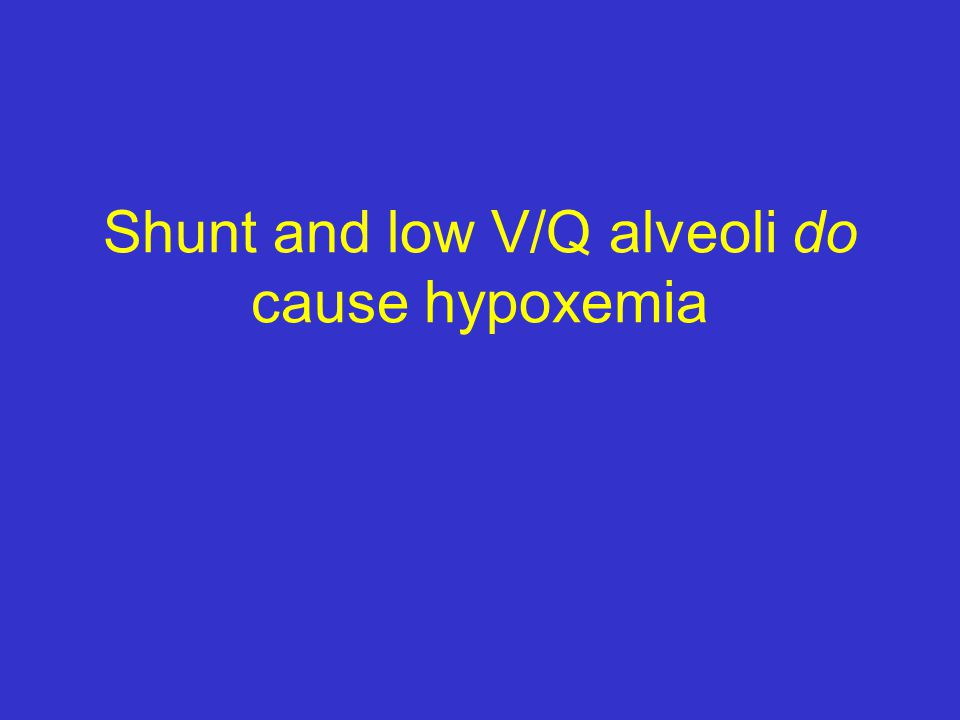 Shunt and low V/Q alveoli do cause hypoxemia