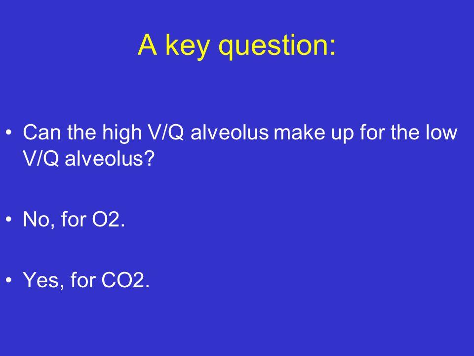 A key question: Can the high V/Q alveolus make up for the low V/Q alveolus.